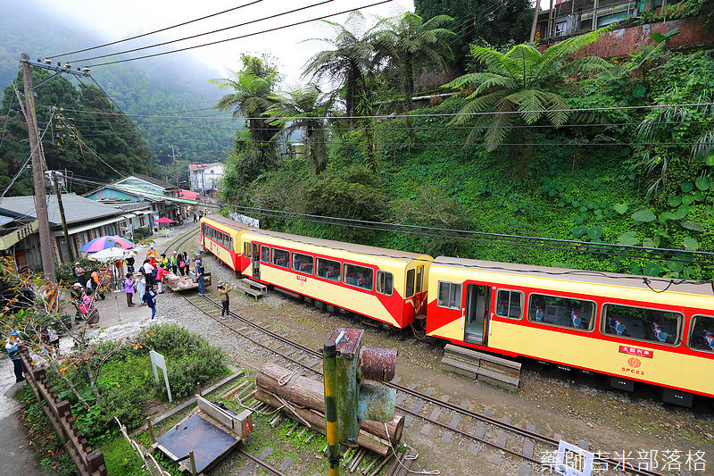 alishan_railway_0579.jpg