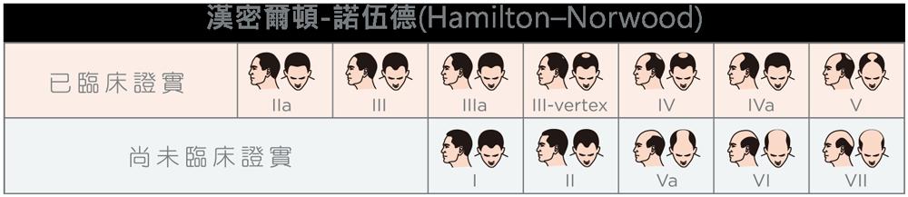 漢密爾頓-諾伍德(Hamilton–Norwood)