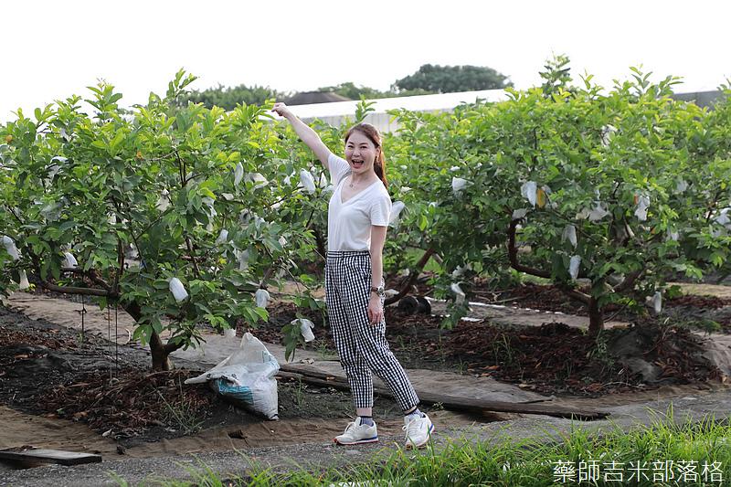 Taiwan_1908_548.jpg