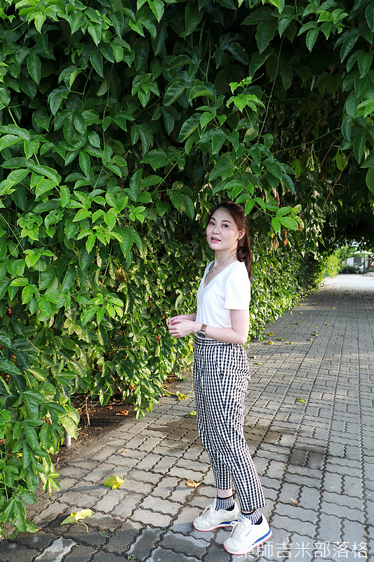 Taiwan_1908_564.jpg