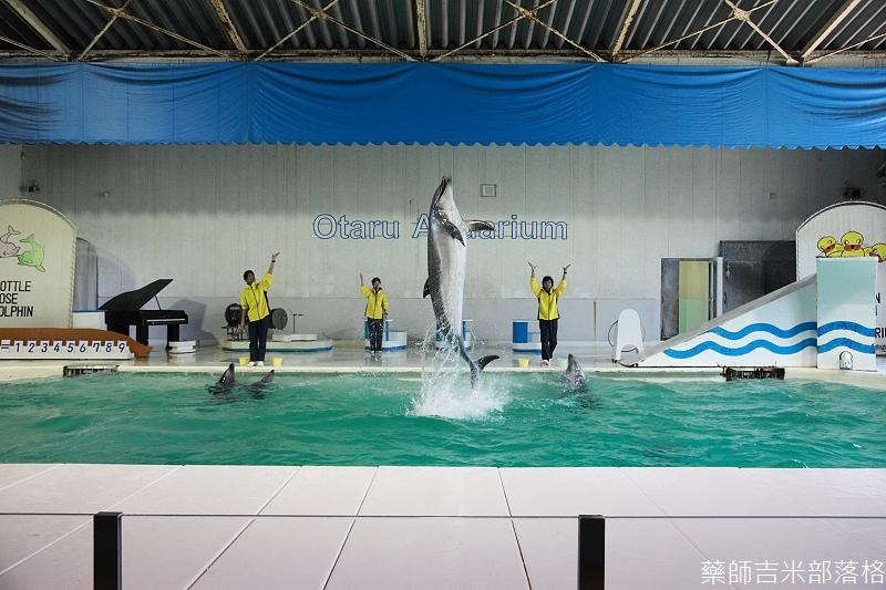 Otaru_Aquarium_110