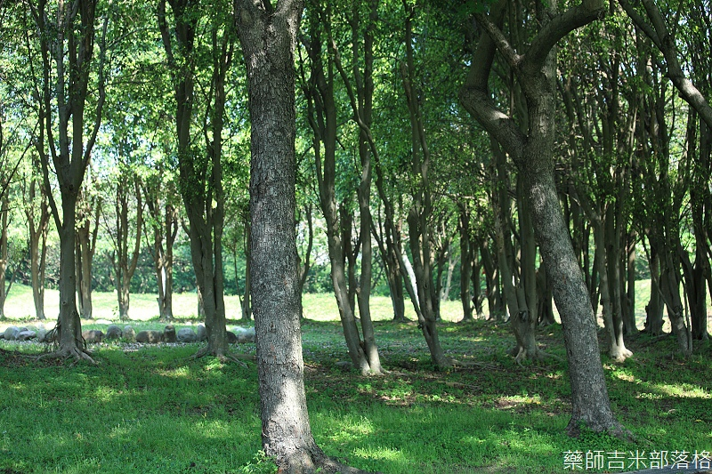 Park_039