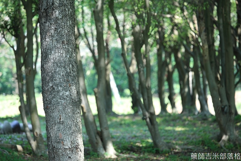 Park_047