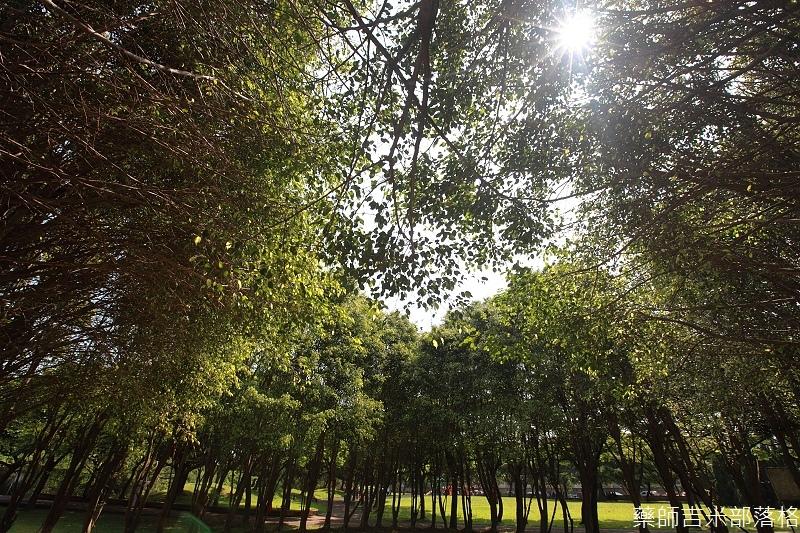 Park_100