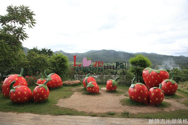 thailand_pai_2013_01_203