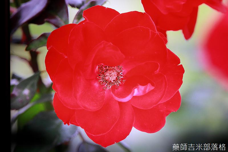 Sony_X9000H_068.jpg