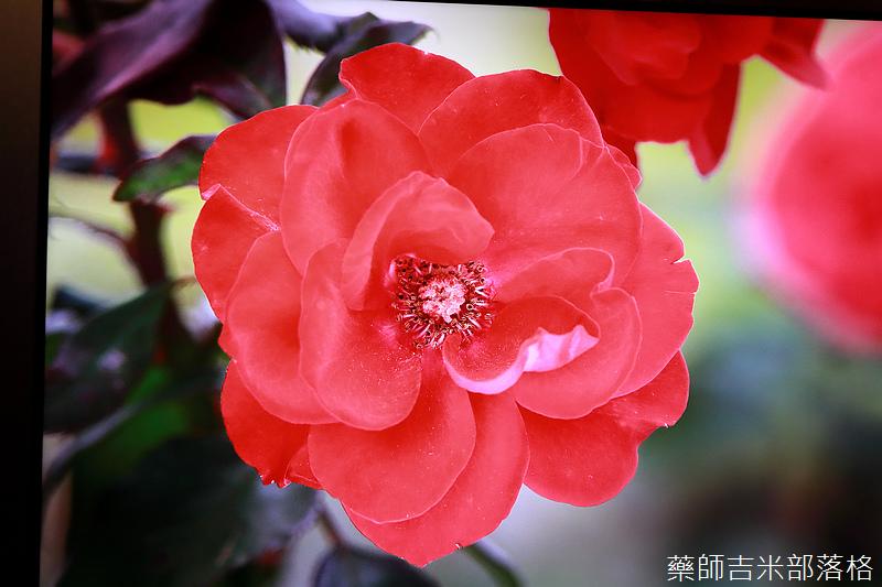 Sony_X9000H_067.jpg