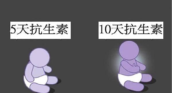 1010.jpg