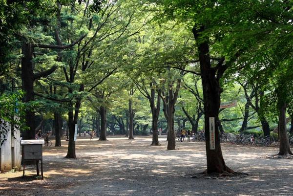 2005 東京25.JPG