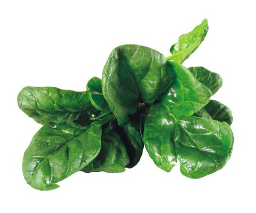 spinach-1327540.jpg
