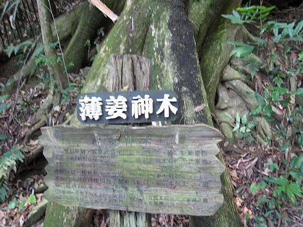 北埔.綠世界 (85).JPG