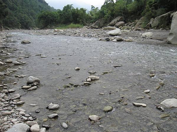 溪邊 (4).JPG