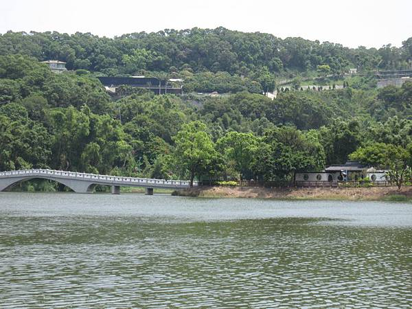 青草湖 (4).JPG