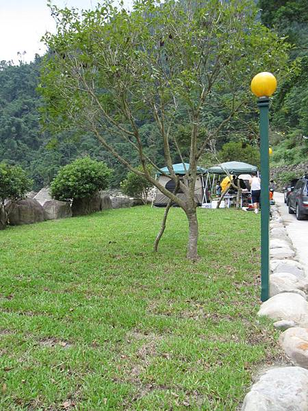 溪邊營位 (2).JPG