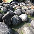 石頭迷宮 (1).JPG