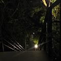 晚上 (2).JPG