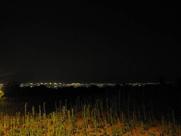 鳥居夜景 (5).JPG