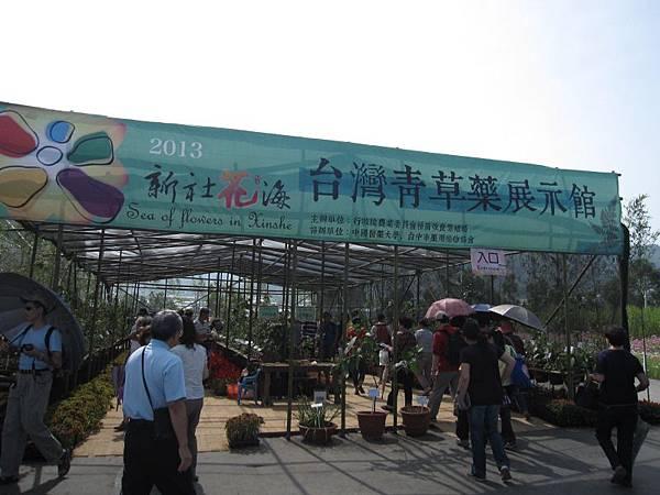 台灣青草藥展示館 (1).JPG