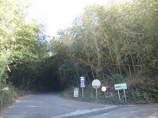 11竹林隧道入口.JPG