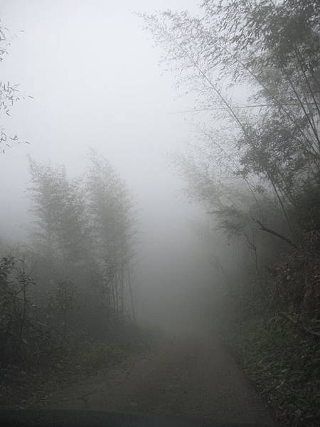 下山的路-大霧.JPG