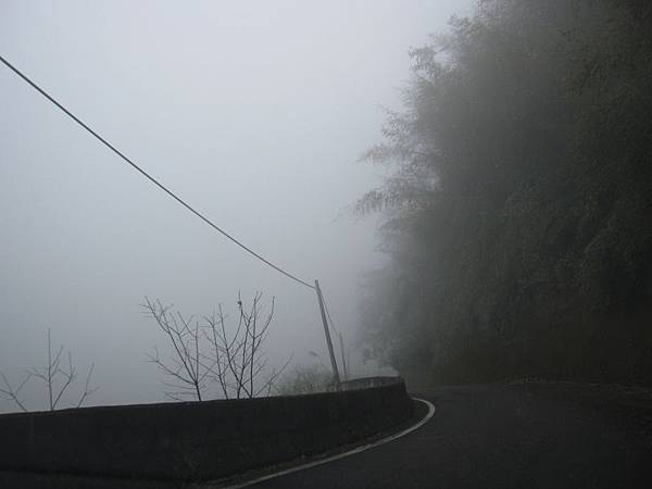 下山的路-大霧 (1).JPG