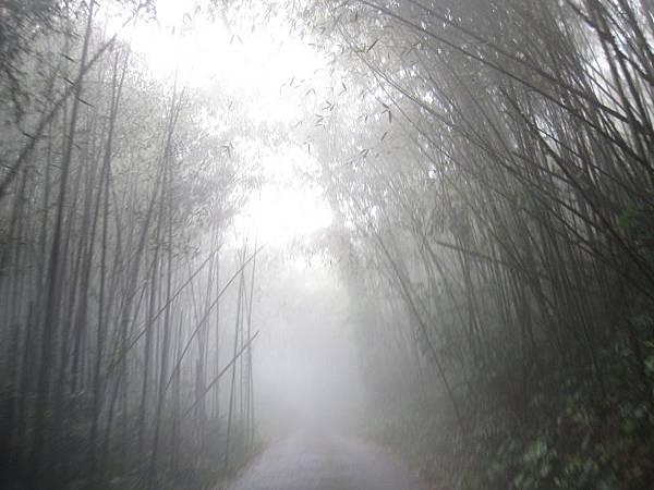 下山的路-大霧 (2).JPG