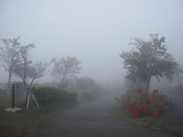 12.29一整天濃霧 (3).JPG