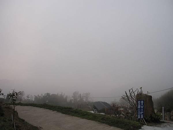 12.28傍晚起霧 (6).JPG