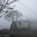 12.29一整天濃霧 (1).JPG