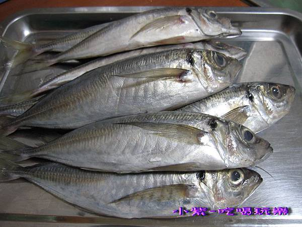 竹筴魚一夜干 (1).jpg