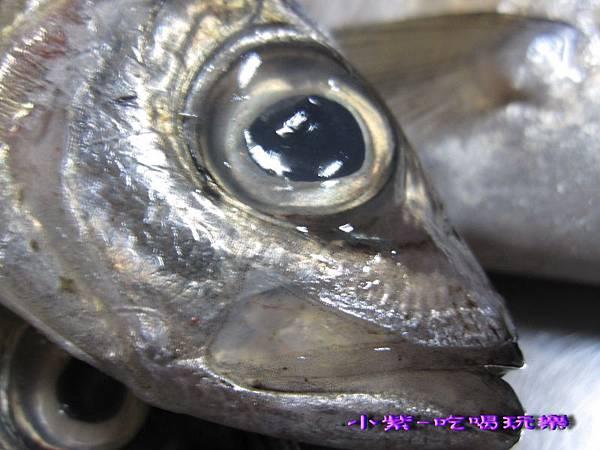 竹筴魚一夜干 (2).jpg