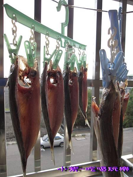 竹筴魚一夜干 (3).jpg