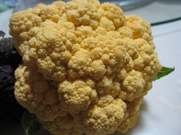 黃金色花椰菜.JPG