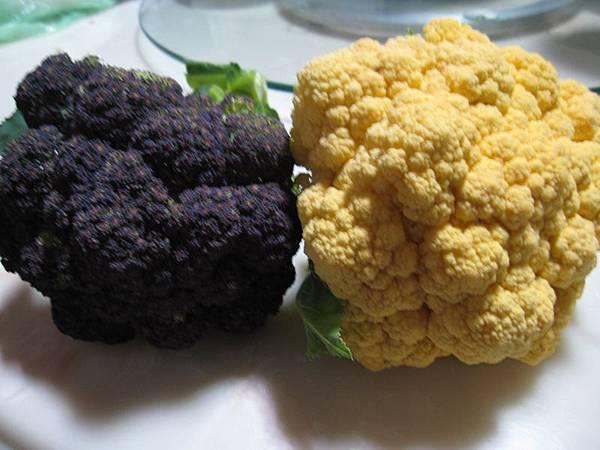 紫色.黃金色花椰菜.JPG