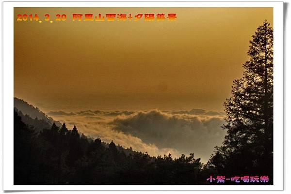 2014.3月20阿里山雲海+夕陽 (7).jpg