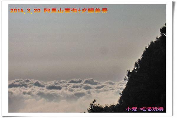 2014.3月20阿里山雲海+夕陽 (17).jpg