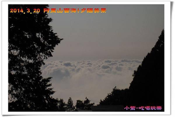 2014.3月20阿里山雲海+夕陽 (23).jpg