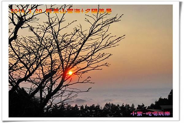 2014.3月20阿里山雲海+夕陽 (45).jpg