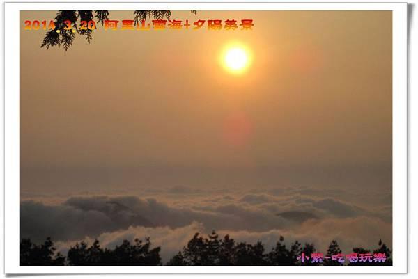 2014.3月20阿里山雲海+夕陽 (49).jpg
