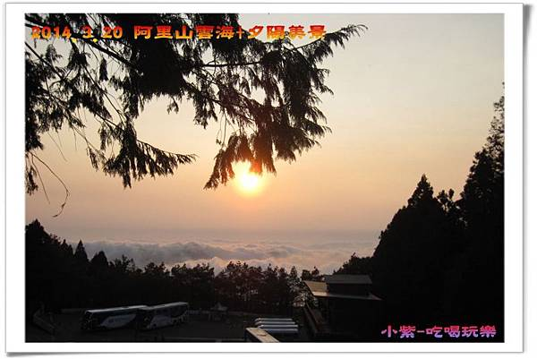 2014.3月20阿里山雲海+夕陽 (51).jpg