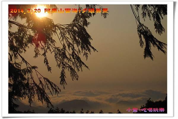 2014.3月20阿里山雲海+夕陽 (56).jpg