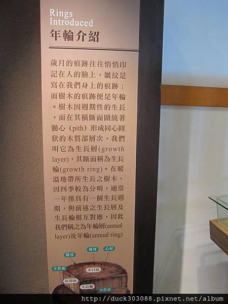 阿里山櫻花季2014 (172).JPG