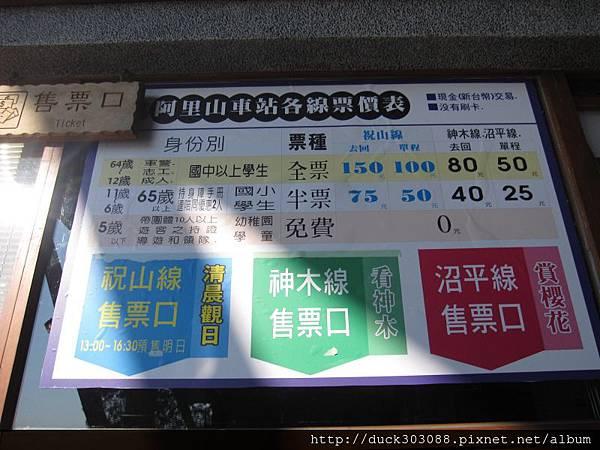 阿里山櫻花季2014 (266).JPG