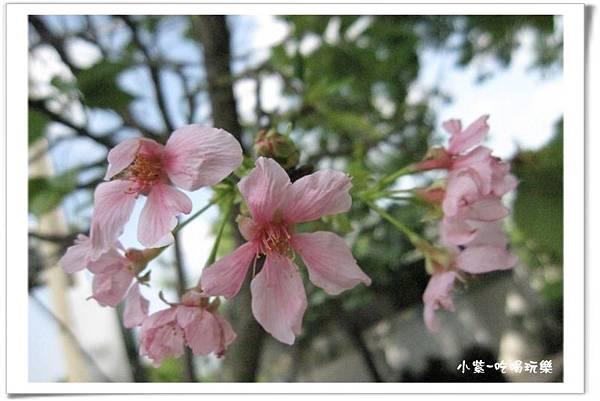 2014.4.12湖光山舍露營區.jpg