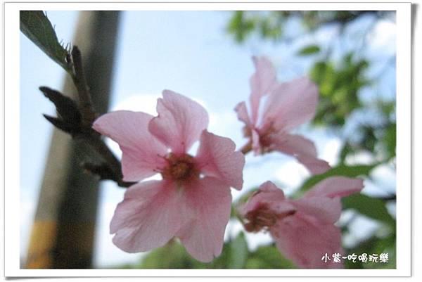 2014.4.12湖光山舍露營區 (107).jpg
