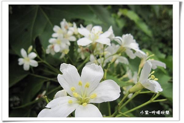 小半天-半天橋 (20).jpg