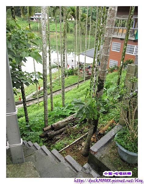 上層營位往水庫之階梯步道 (1).jpg