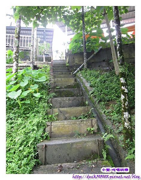 上層營位往水庫之階梯步道 (2).jpg
