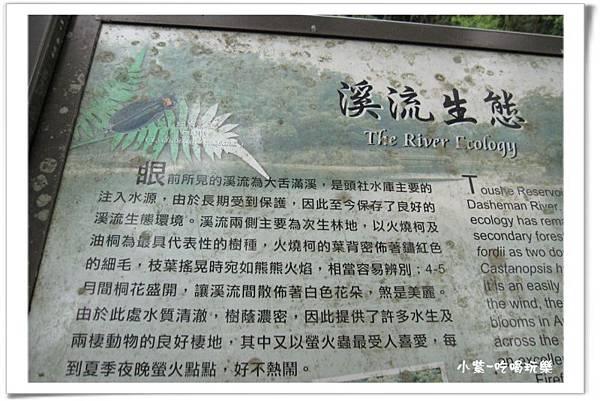 日月潭-頭社水庫環湖步道 (30).jpg