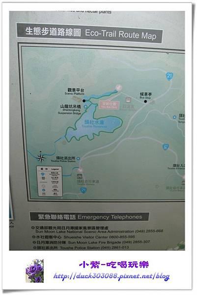 日月潭-頭社水庫環湖步道 (26).jpg